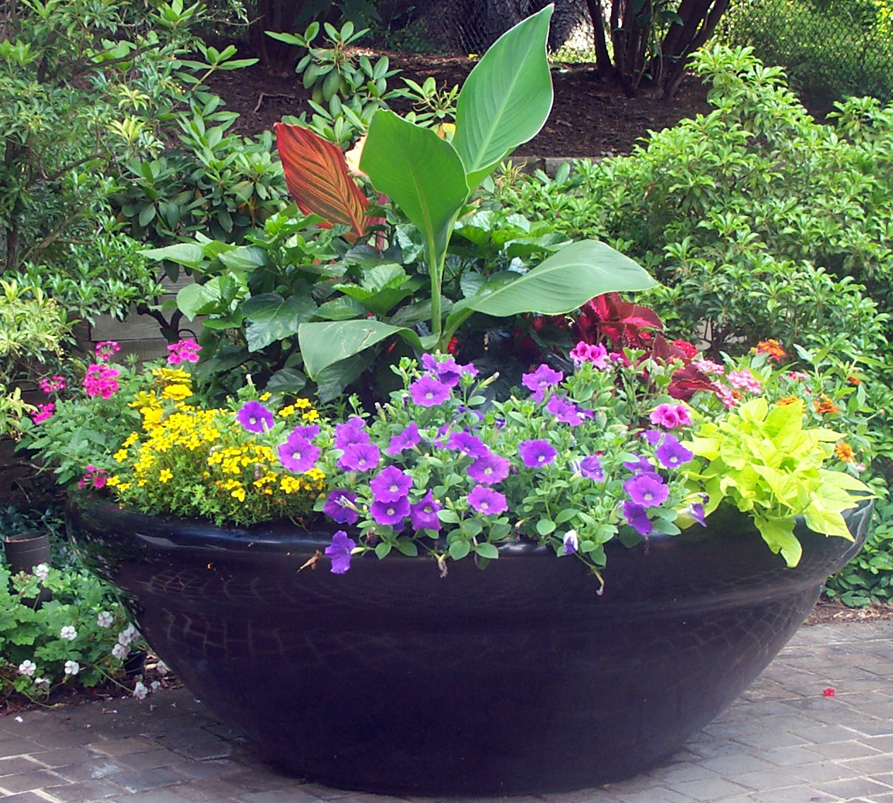 Containers with pizazz not your ordinary container for Container gardening ideas