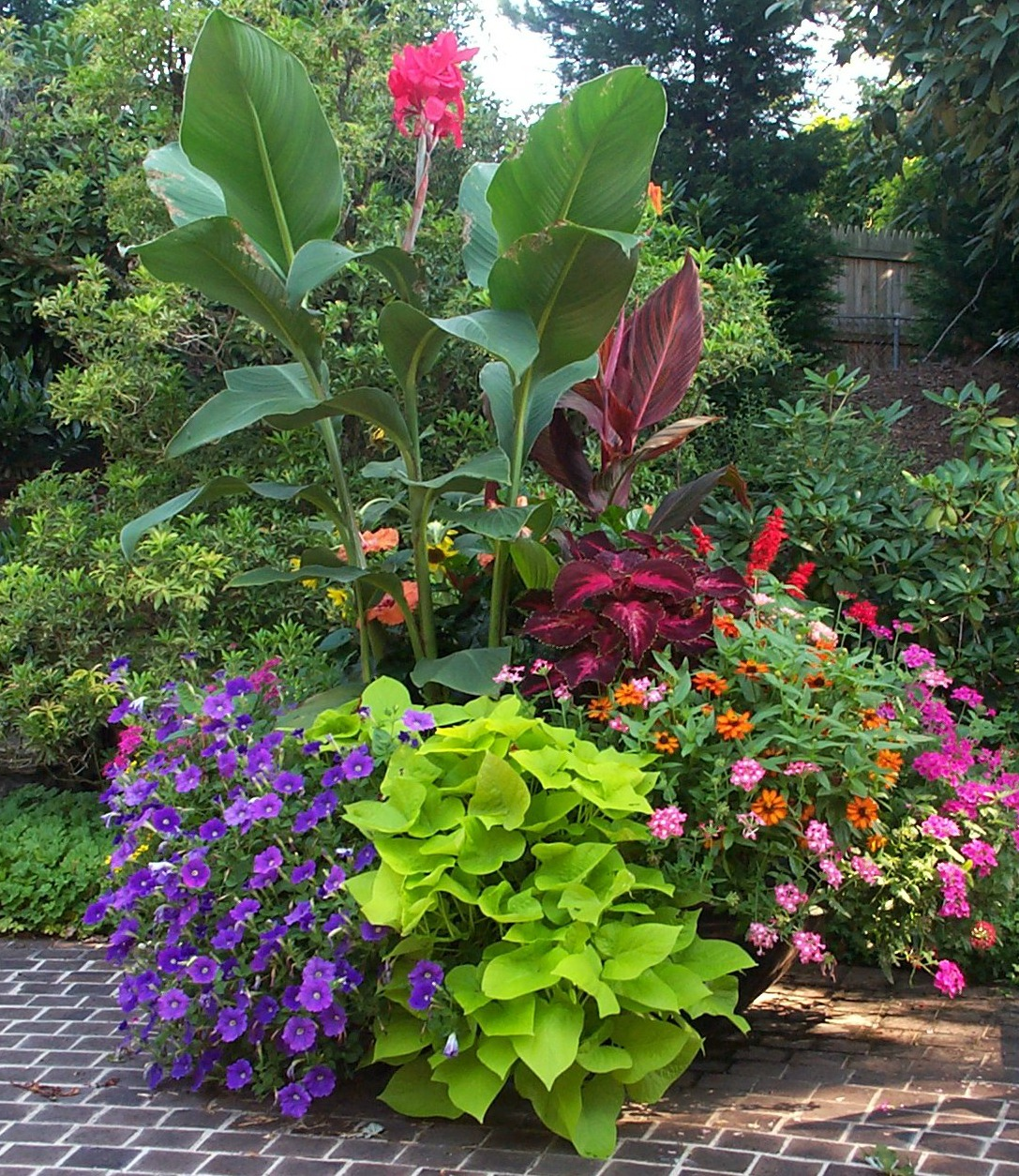 Containers with pizazz not your ordinary container - Container gardening ...