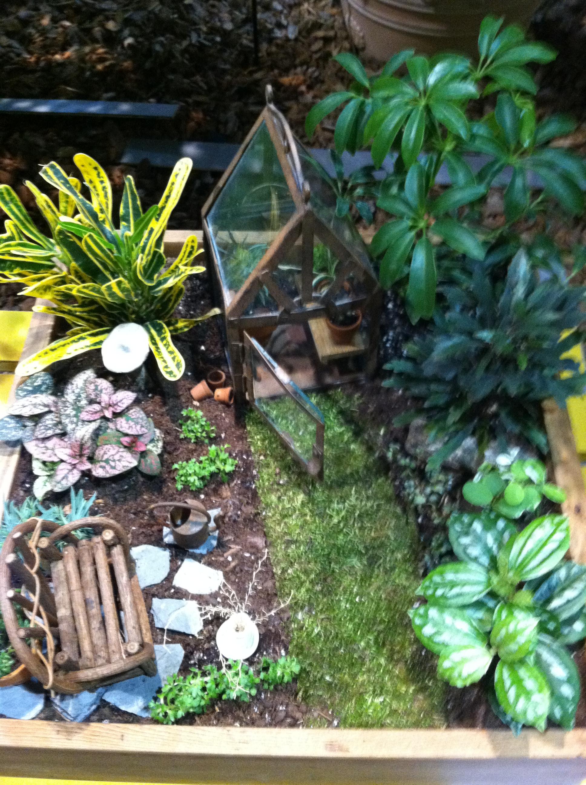 Miniature Gardens Whimsical Creations The Garden Diaries