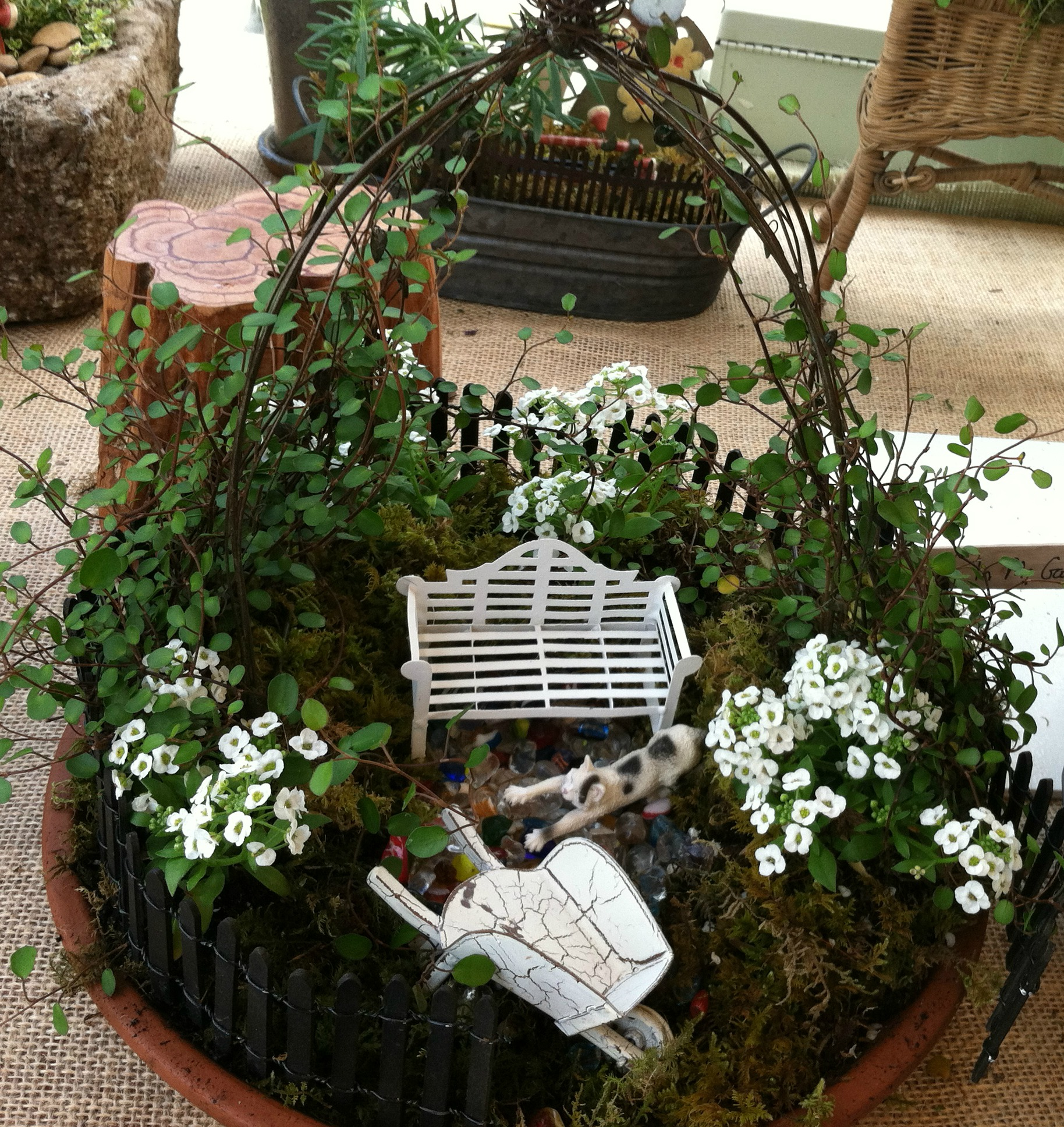 Small Water Garden Needs No Electricity Just Place Pots: Miniature Gardens – Whimsical Creations