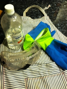 Safety items- apron, goggles, white vinegar, rubber gloves