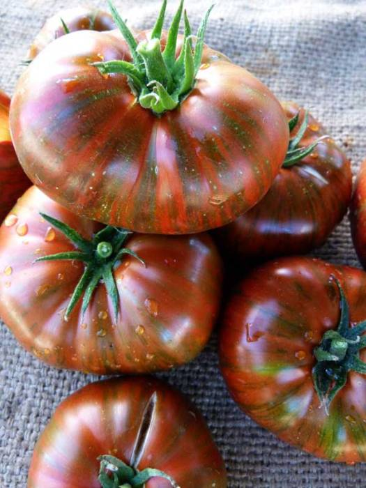 Beautiful Heirloom Tomatoes