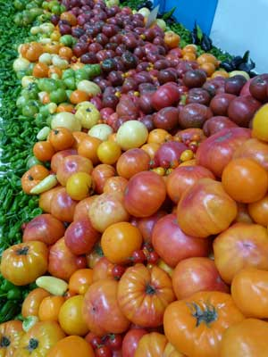 The beautiful array of colors of heirlooms