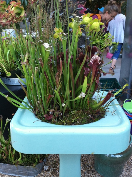 Innovative containers!