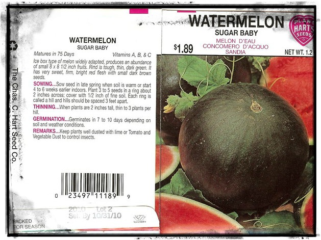 Watermelon_Sugar_Baby_packet