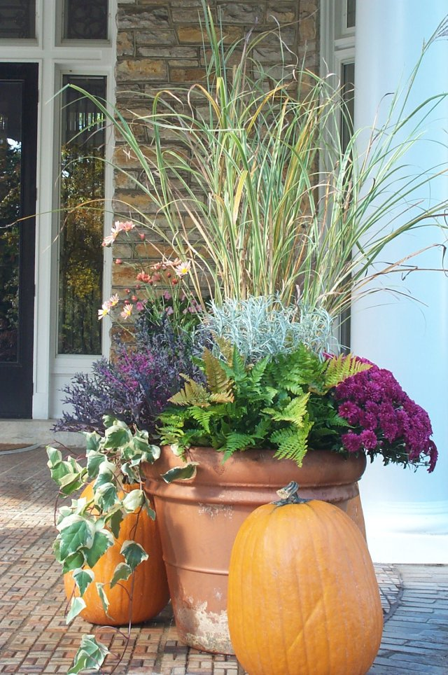 Fall container with pumpkin and grass