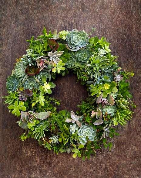 succulentwreath