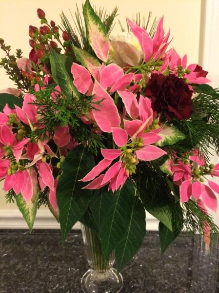 Poinsettias used as a cut flower