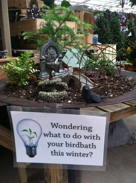 Mini garden in bird bath