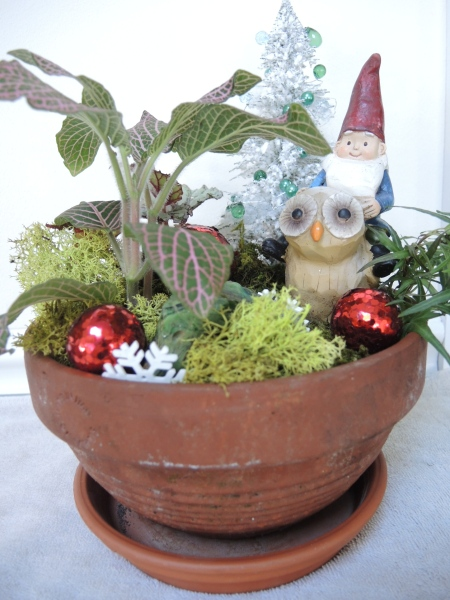 Dish garden with gnome