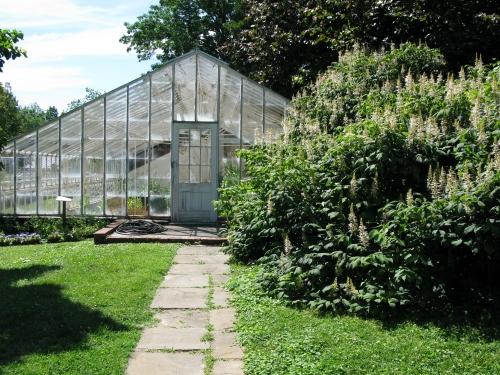 Old greenhouses at Hampton