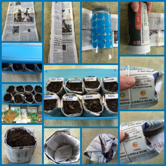 How to make newspaper pots for seed starting