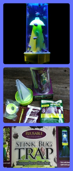 Stink Bug Trap by Rescue!