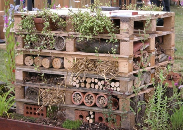 wildlife-trust-insect-hotel
