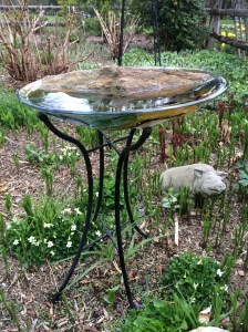 Birdbath with large rock for perching insects and birds