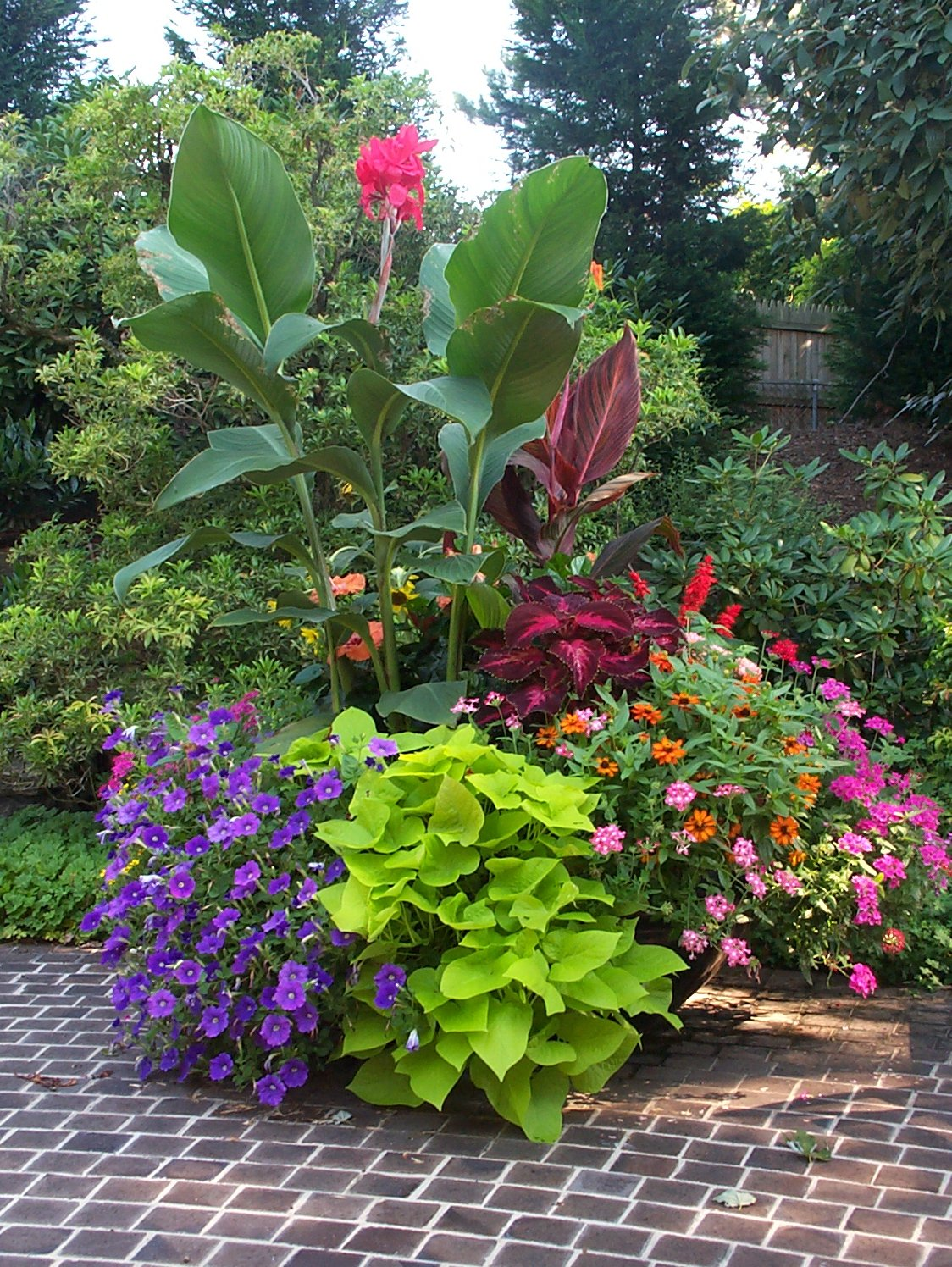 Containers with pizzazz not your ordinary container for Container gardening