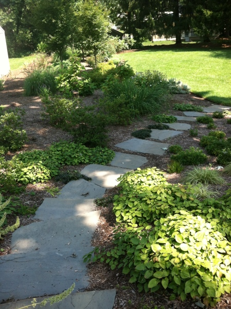 Hillside Makeover-Transforming an Ordinary Slope into a ...