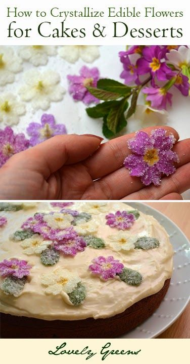 Lovely Greens has a great post on crystallizing your blossoms