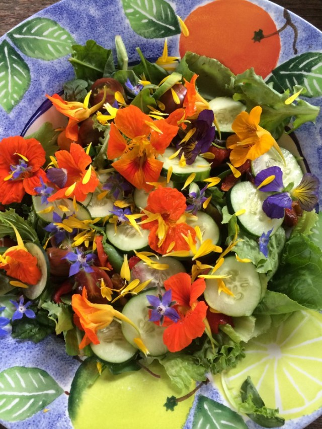 Edible flowers garnish a green salad