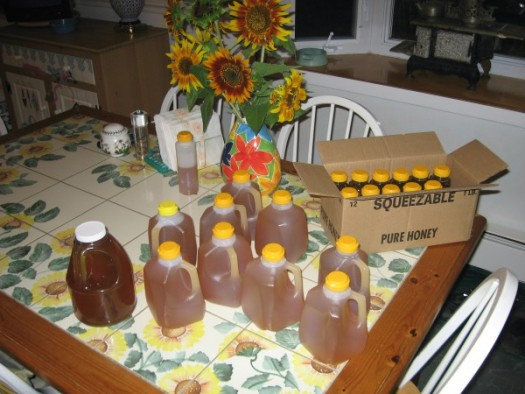 Bottled honey
