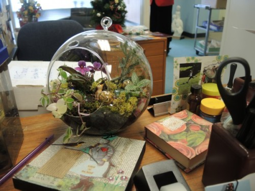 Globe terrarium sitting on a Hopkins desk top