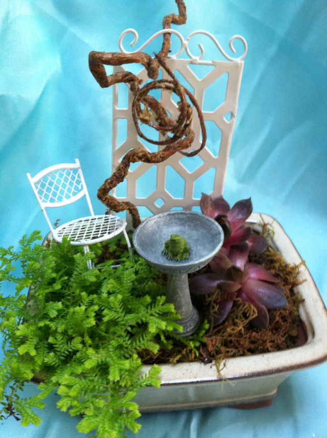 Bonsai containers make perfect miniature garden containers