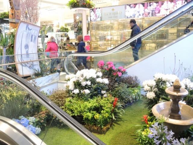 A springtime scene between Macys escalators