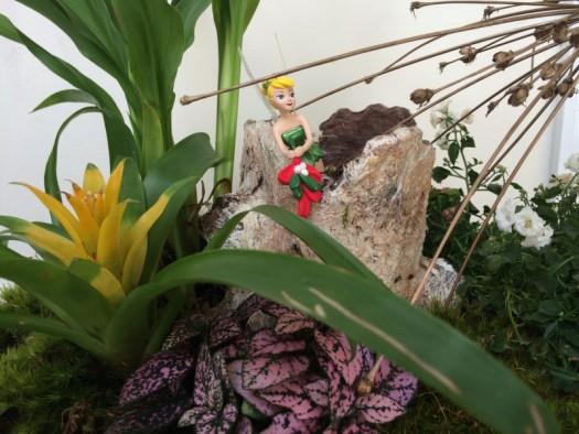 Tinkerbells' miniature garden