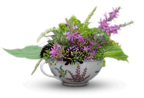 Teacup arrangement, used with permission of Sarah Nixon