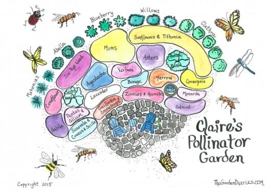 Plan of a pollinator garden