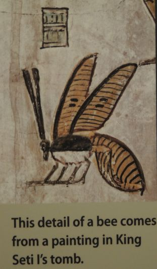 Bee in tomb