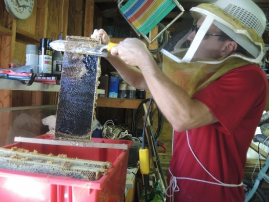 Uncapping wax covering on a frame of honey with a heated knife