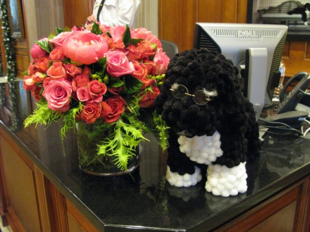 A pom pom Bo sitting on the entrance security desk at the White House in 2011