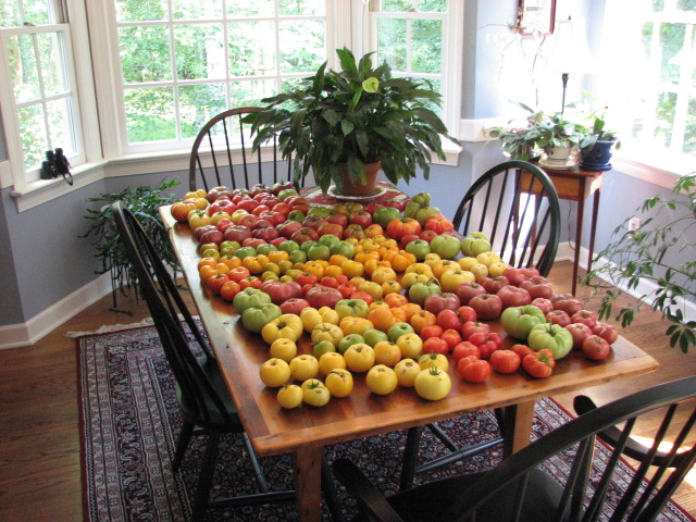 A rainbow of dwarf varieties-courtesy of Craig LeHouillier