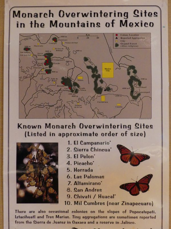 Primary Monarch overwintering sites