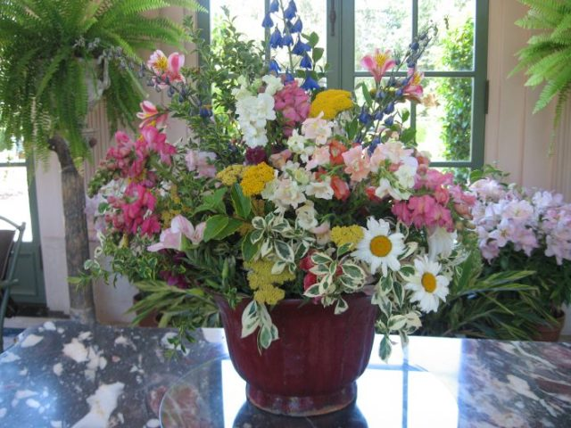 Larkspur and snapdragons from the garden make a fine arrangement